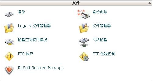 cpanl控制面板中的文件部分